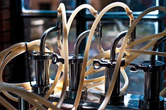 Chocolate machinery 2