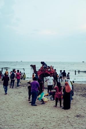 Beachside camel rides seemed popular