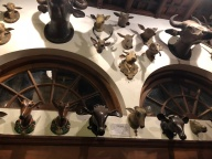 One way to have deer heads on the wall