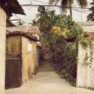 Neighborhood streets