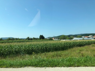 Corn fields like Central Ohio