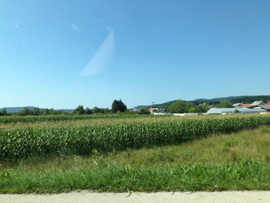 Corn fields like Central Ohio